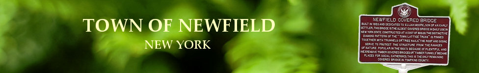 Town of Newfield