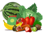 vegetables143x112
